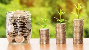 Domácnosti loni zažily finančně úspěšný rok